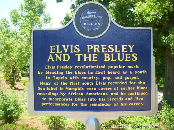 Elvis Presley and The Blues