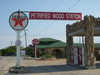 Texaco - Petrified Wood Gas Station in Decatur Texas